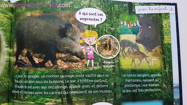enfant-nature-empreintes-livres-copain-bois