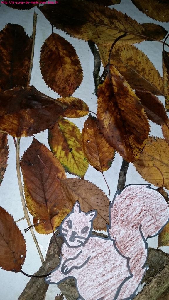 ob_116829_arbre-d-automne3-l-enfant-et-la-nature