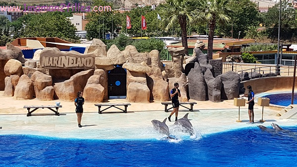 marineland-parc-attractions-animaux
