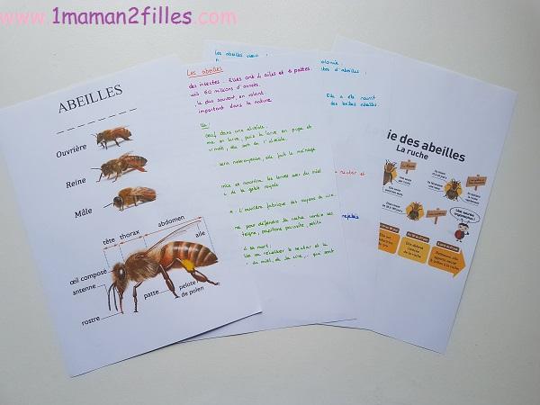 abeilles-plante-semence-jardinis-1maman2filles