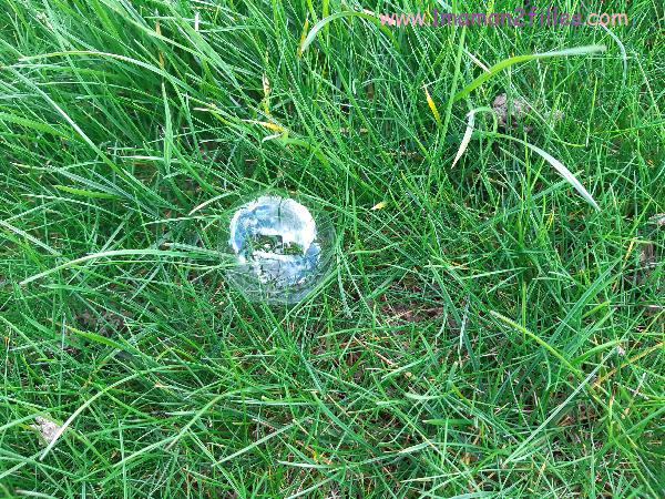 une belle bulle de savon dans l'herbe pâte durcissante