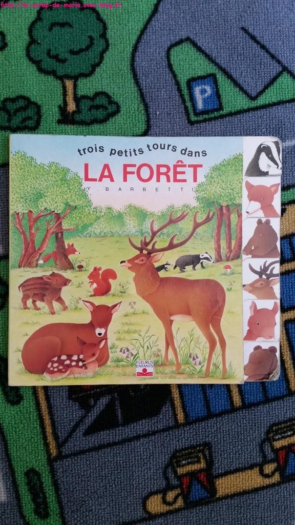 1maman2filles les aniamaux de la forêt4