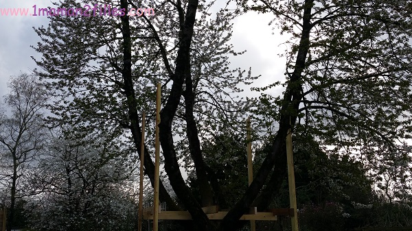 1maman2filles activités nature avec papa cabane dans les arbres 3