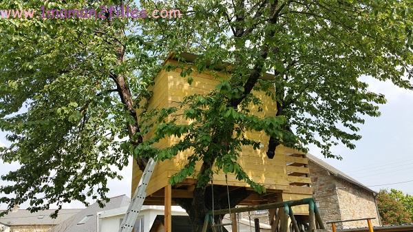 cabane-en-bois-enfants-arbre-fabrication-maison