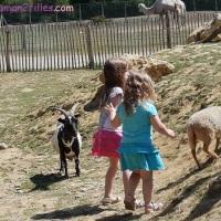#25 L'enfant et la nature :  une sortie à la planète sauvage