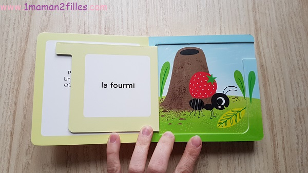 livres-flamands-roses-saumone