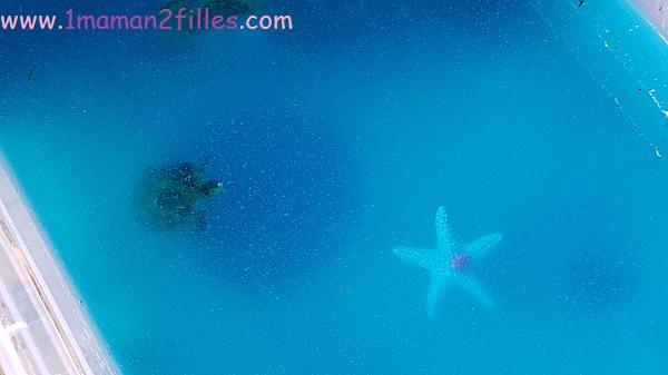 glibbi-bac-sensoriel-ocean