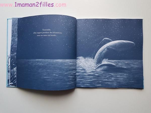 livres-enfants-petite-baleine