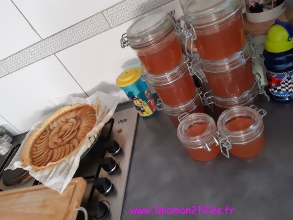 pomme-etats-cuisiner-vinaigre-gelee-confiture